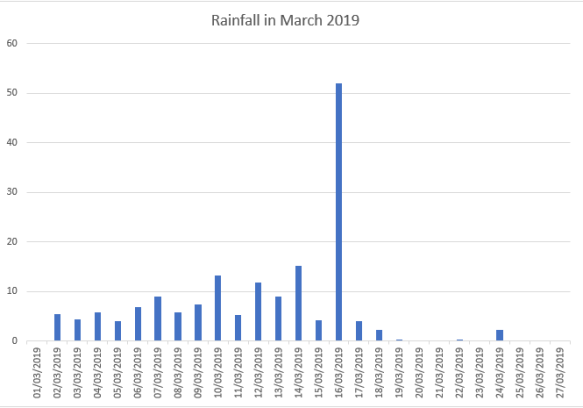 Rainfall in March 2019
